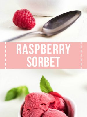 Two bowls of raspberry sorbet with a leaf of mint on the side.