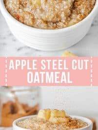 apple steel cut oatmeal in a bowl