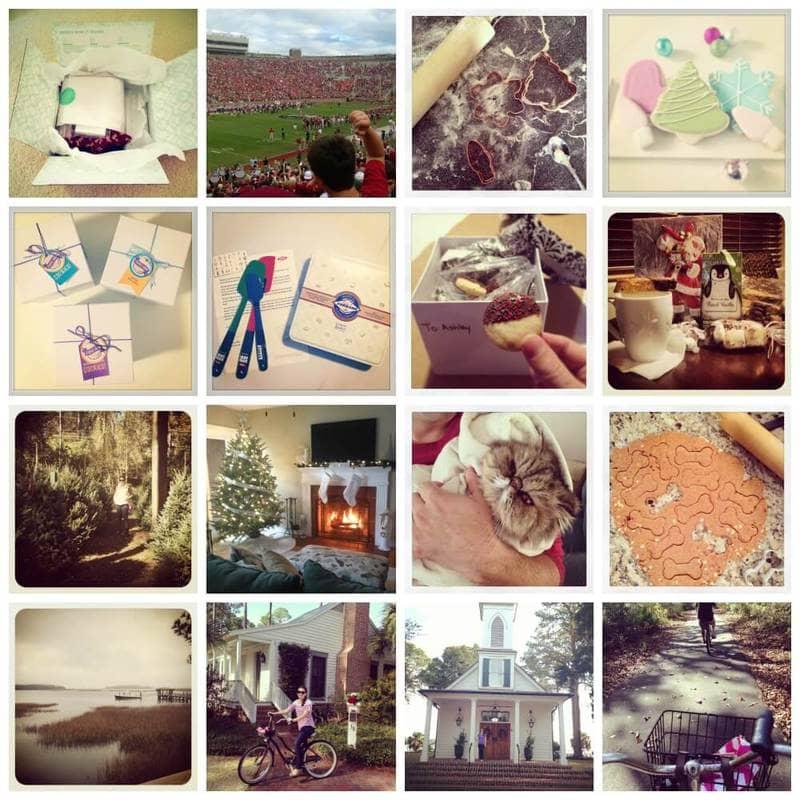 December Instagram ~ Spoonful of Flavor