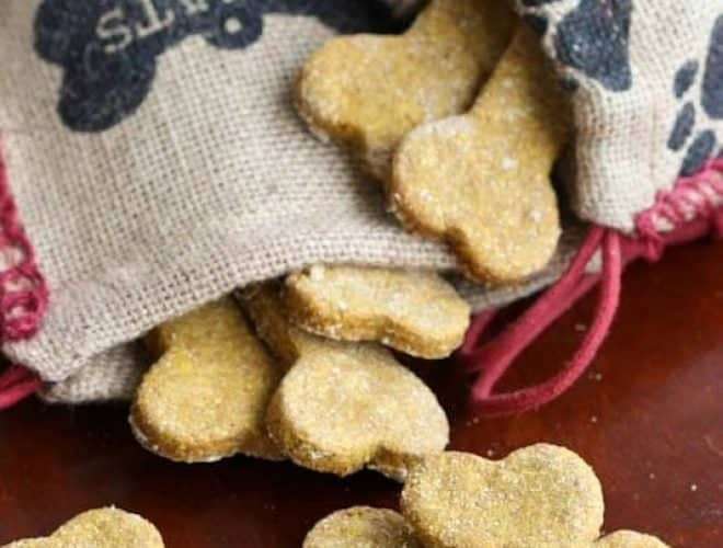 Peanut Butter Pumpkin Dog Treats are homemade treats made with only five natural ingredients!
