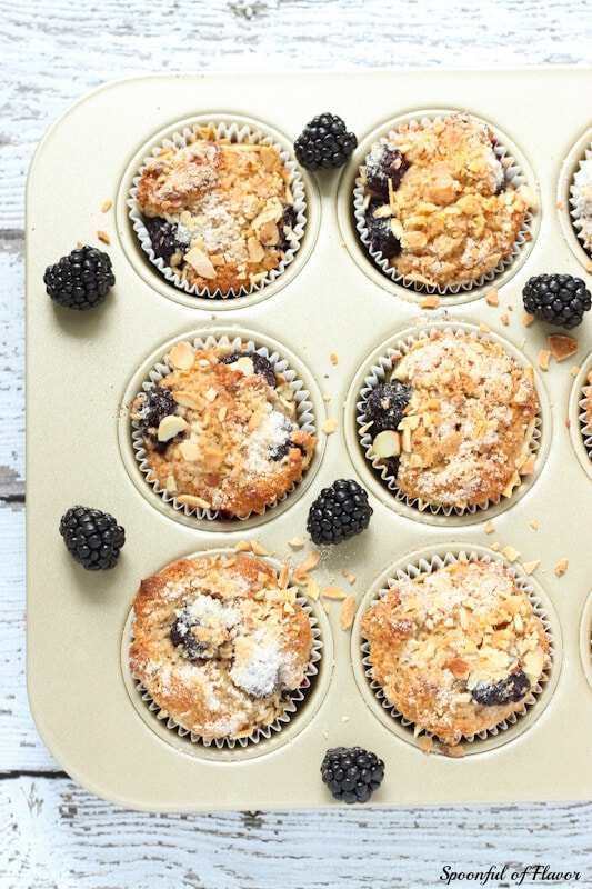 Blackberry Muffins ~ whole wheat muffins filled with blackberries and topped with chopped almonds!