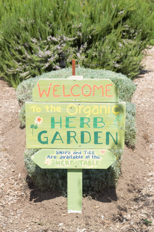 Earthbound Organic Farm Stand Herb Garden