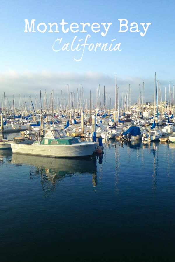 Monterey Bay California - the best things to see, do and eat!