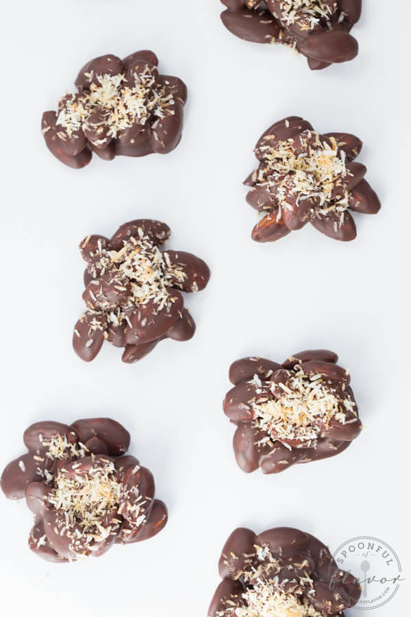 Dark Chocolate Coconut Almond Clusters are made with 5 simple ingredients and are paleo and vegan friendly!