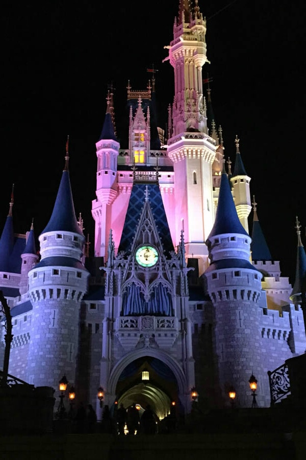 My Disney Experience at Walt Disney World in Orlando, Florida for Food Blog Forum 2015!