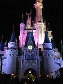 My Disney Experience at Walt Disney World in Orlando, Florida for Food Blog Forum 2015!
