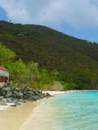 The Best Free Activities in St John, USVI including the best beaches, snorkeling, hiking, and more!