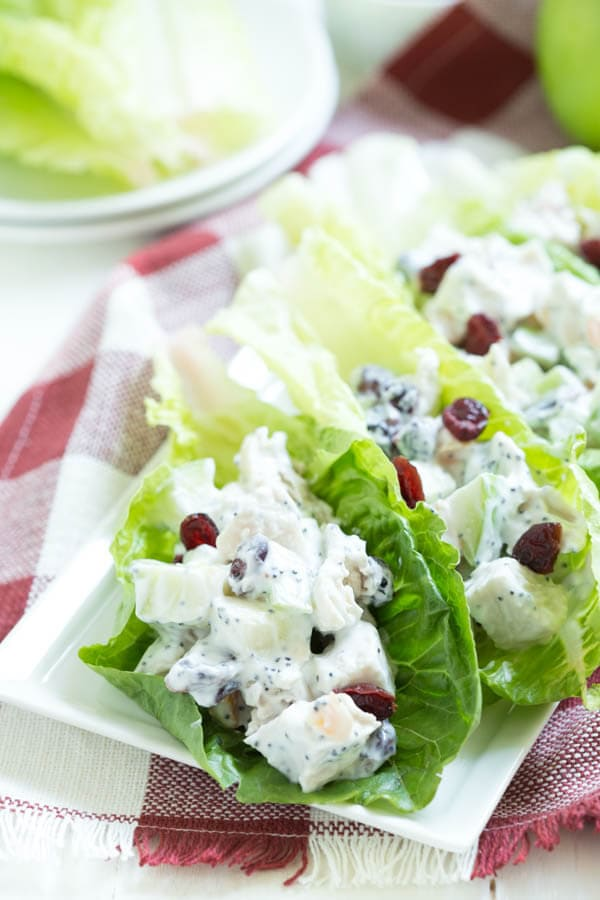 Apple Cranberry Apricot Chicken Salad Lettuce Wraps ...