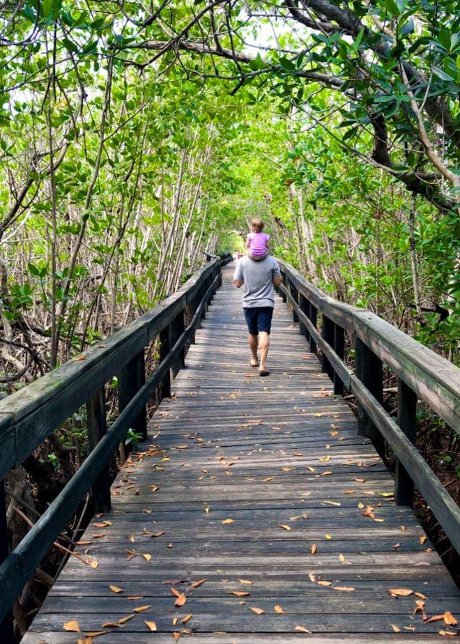 Enjoy a few of my favorite things to do in Orlando before you head to the beach for an Orlando to Beaches Florida Road Trip and explore Hutchinson Island, Florida! Featuring Florida Oceanographic Society and more.