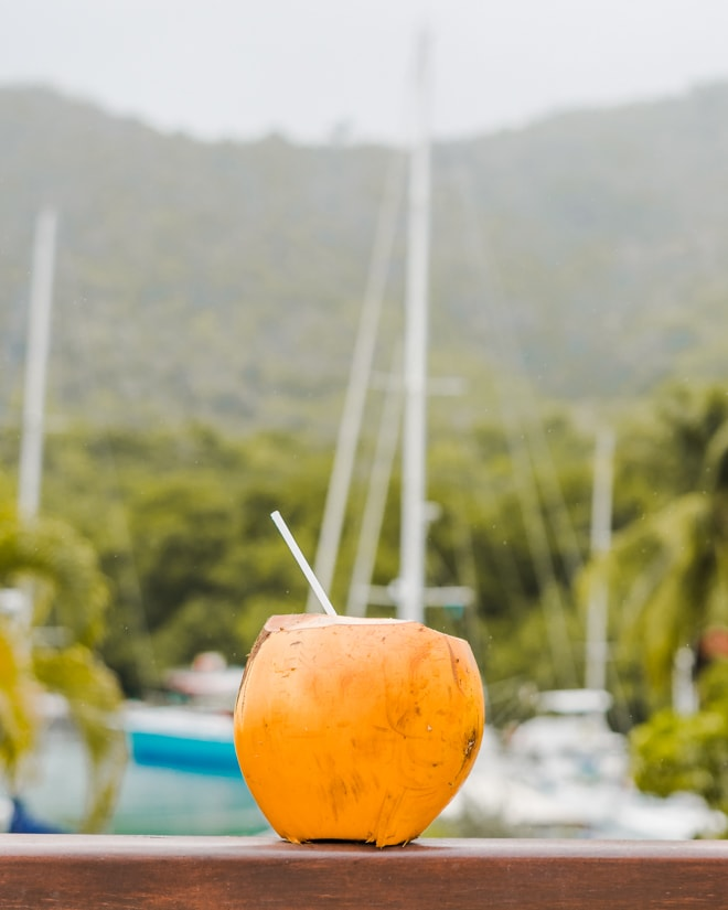 Are you visiting Saint Lucia? Check out my 3 day Guide to Saint Lucia including the best places to stay, eat and explore including unique foodie experiences and more! #travel #foodie #restaurant #stlucia #saintlucia #caribbean #travelguide #resort #dining