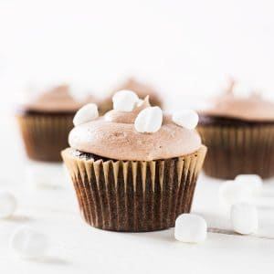 Hot chocolate cupcakes with cocoa frosting and mini marshmallows