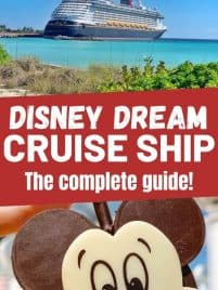 disney cruise ship photo