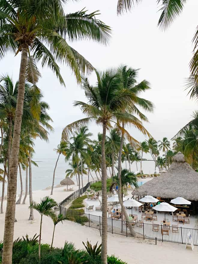 Palm trees and beach view at Amara Cay Resort
