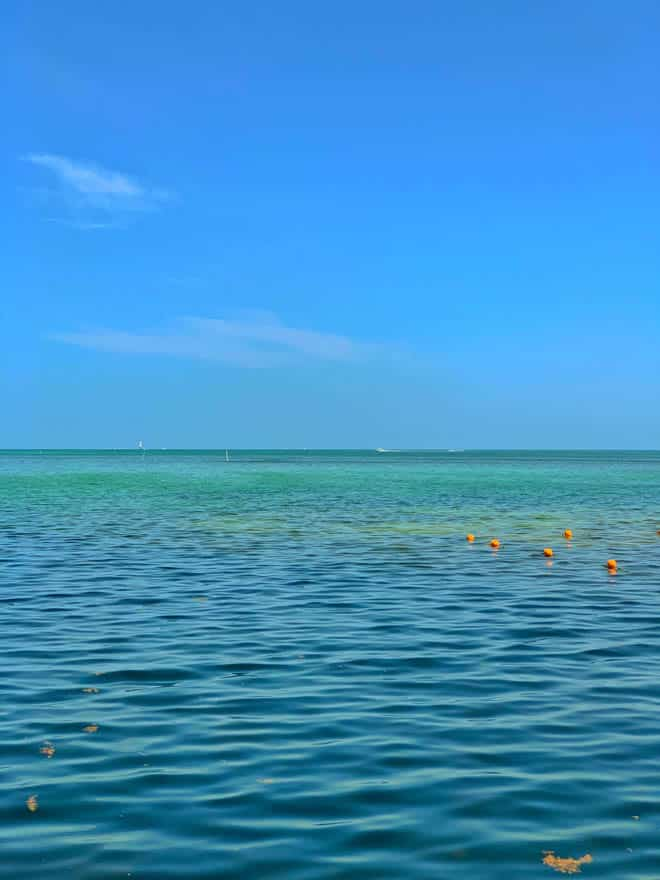 Blue and green water Florida Keys