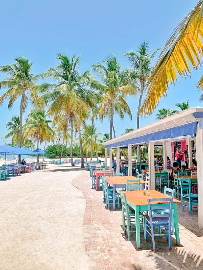 Morada Bay Cafe on the beach with palm trees