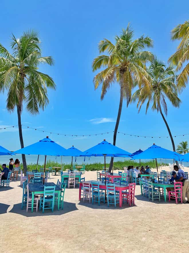 tables with chairs on the beach and palm trees in the background