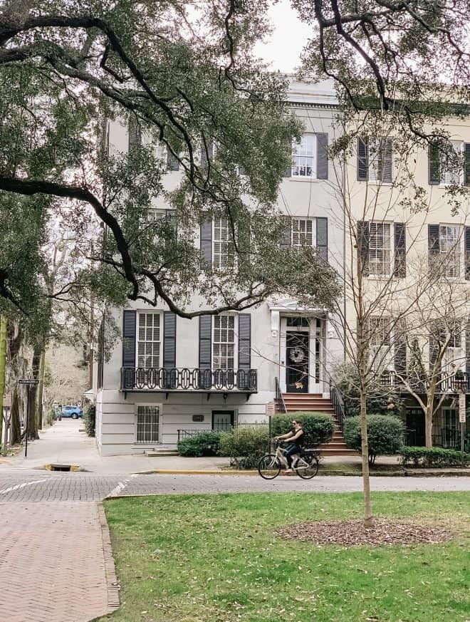 Explore savannah on bike