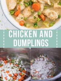 chicken and dumplings soup in a bowl
