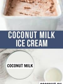 ingredients for coconut milk ice cream and finished product in container