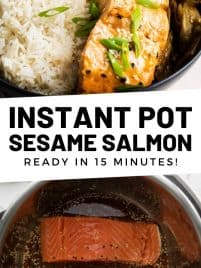 sesame salmon on a plate with rice