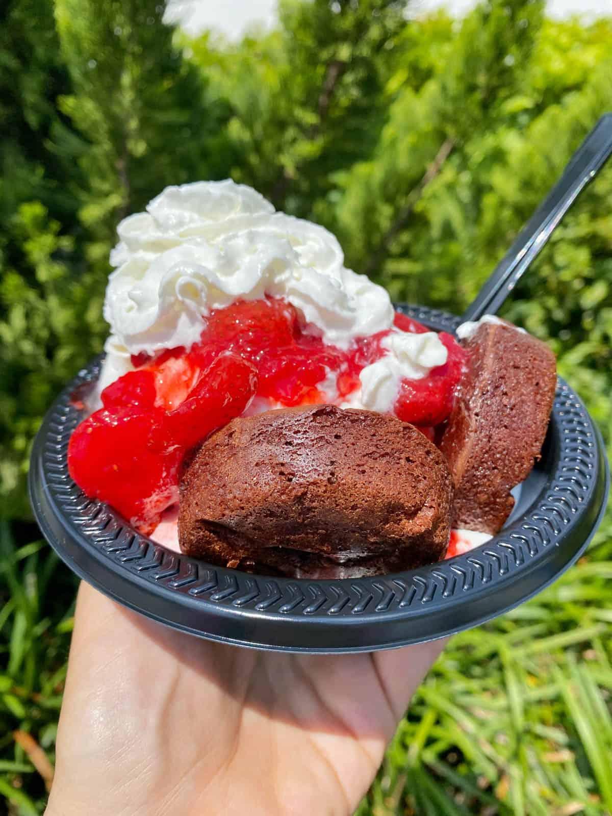 ice cream sundae from magic kingdom