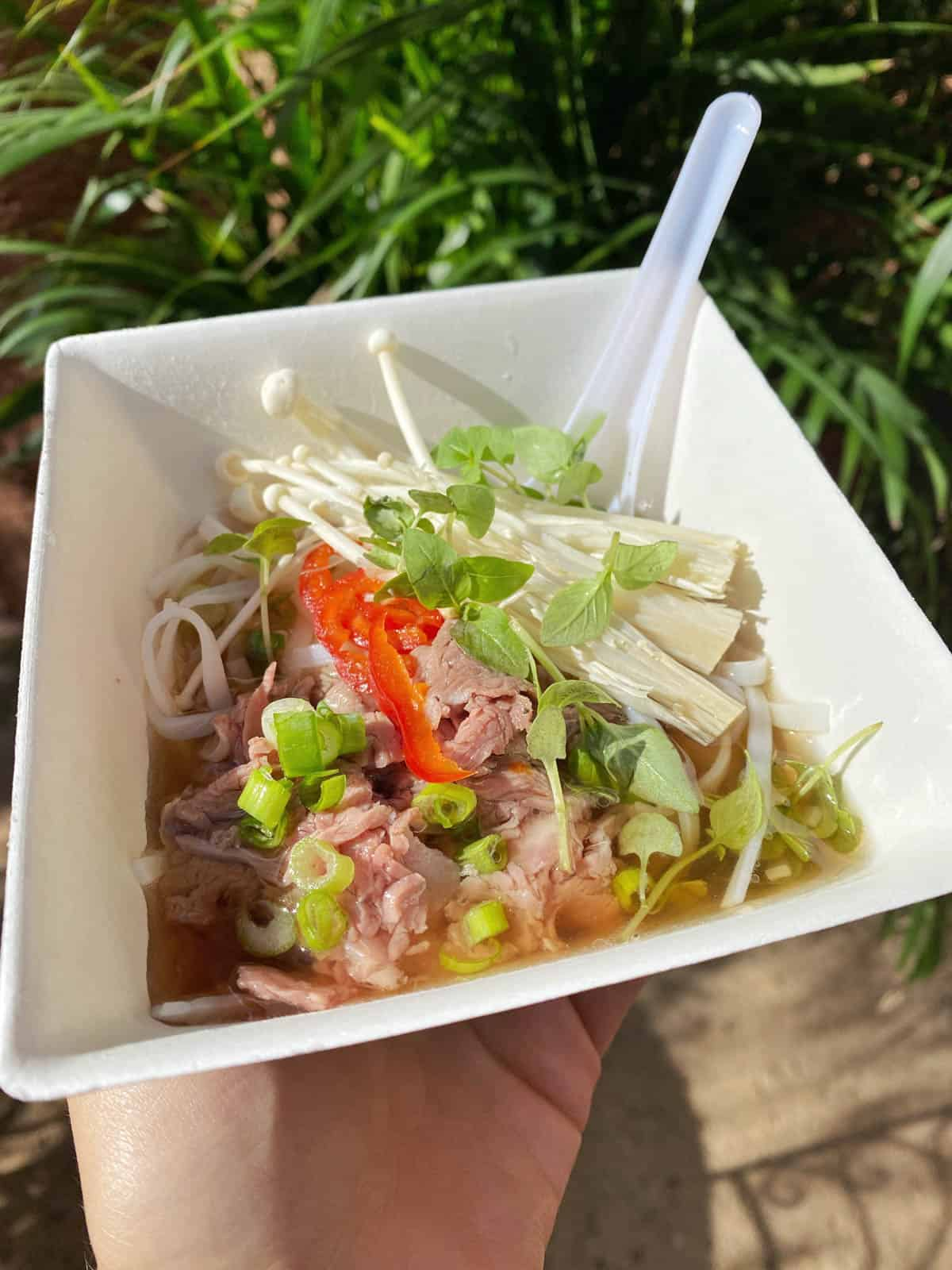 beef pho from the noodle exchange